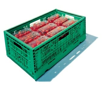 Vented folding plastic crate for agriculture