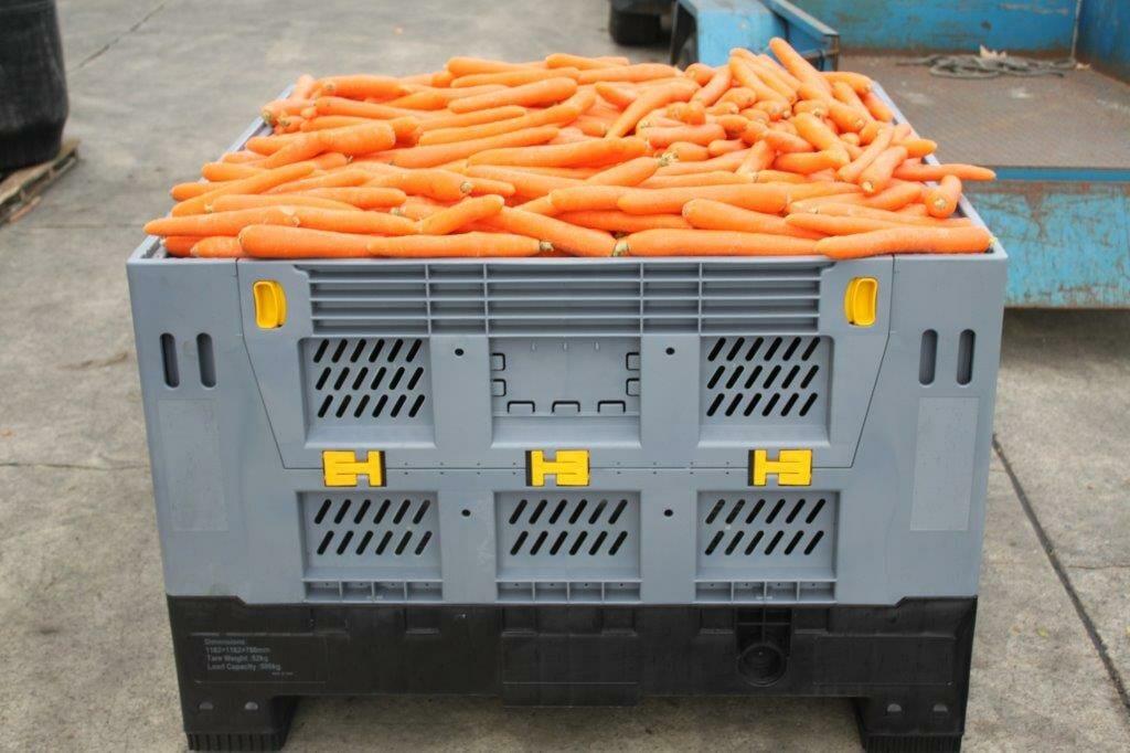 Folding vented Australian Standard plastic box with carrots
