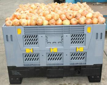 Folding vented Australian Standard plastic box with onions